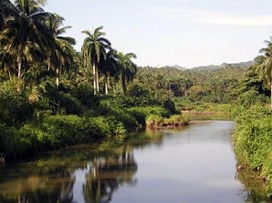 Pinares Mayari