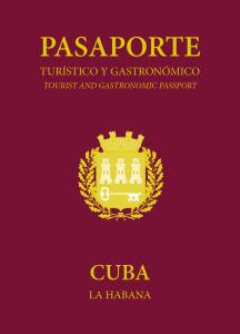 Banner Pasaporte