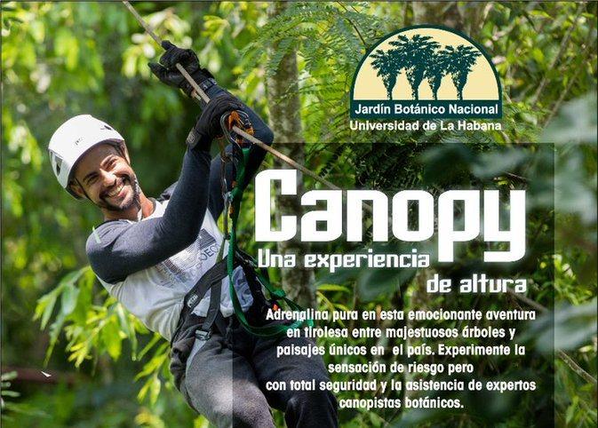 canopy jardin botanico