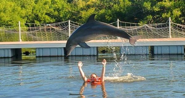 delfinario varadero