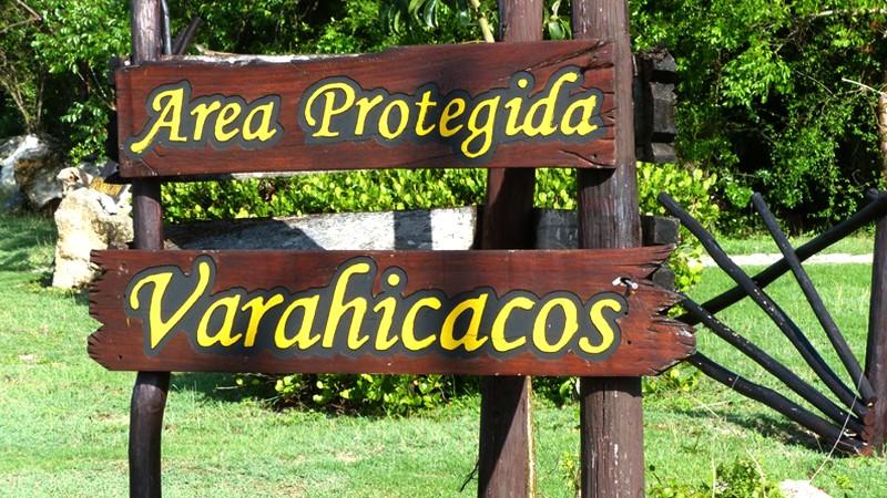 Varahicacos